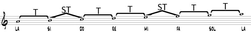 estructura-la-menor